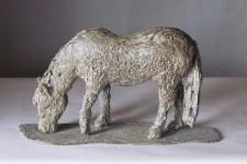 Rag n Bone Pony