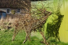 20 Twig Stag and Shadow