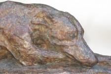 23 Bronze Whippet