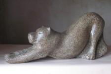 25 Stretching Lioness