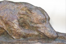 Bronze Whippet